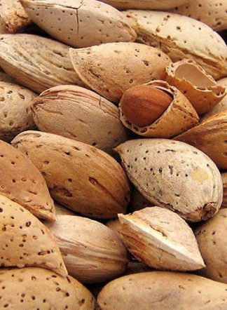 Миндаль, almond