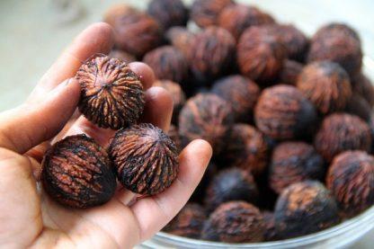 Черный орех, Juglans nigra