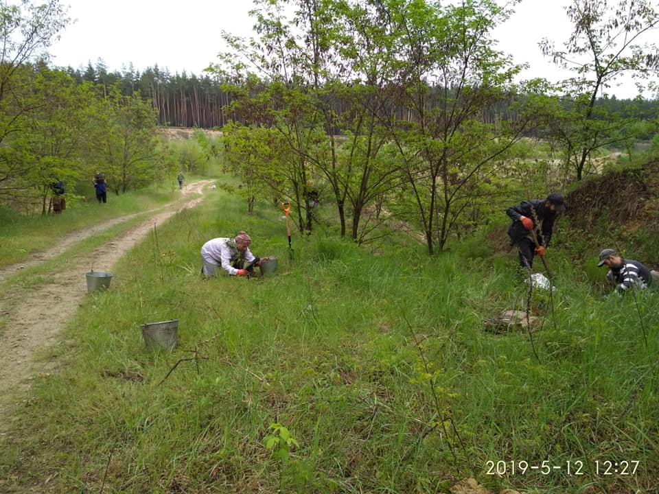 Высадка деревьев и сбор мусора. Жихарь, Харьковская обл.